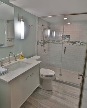 basement remodel - bathroom addition project