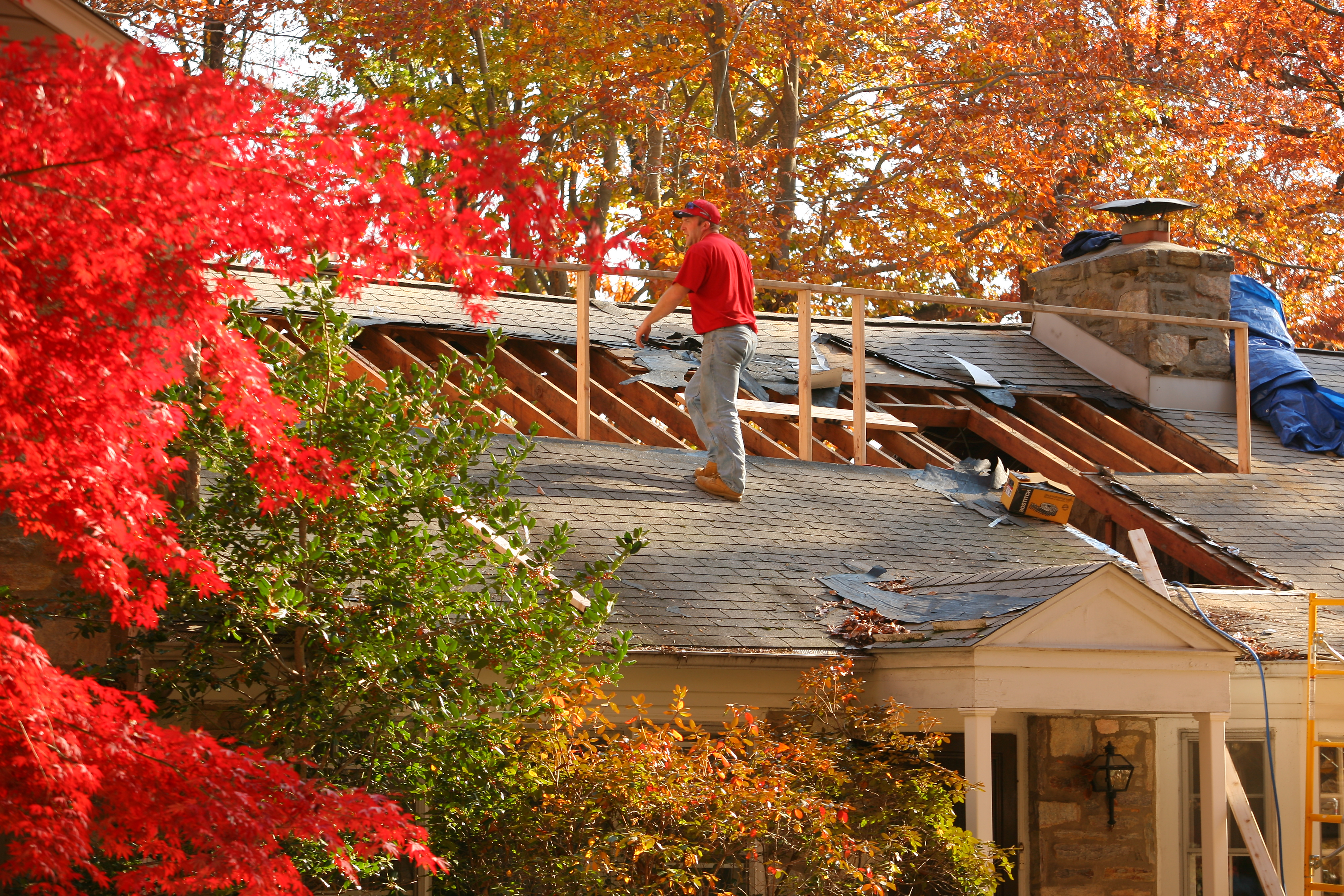 Fall Home Improvement Ideas to Bring in the New Season